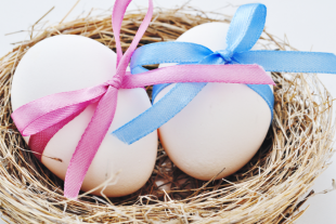 Egg Donation in North Cyprus
